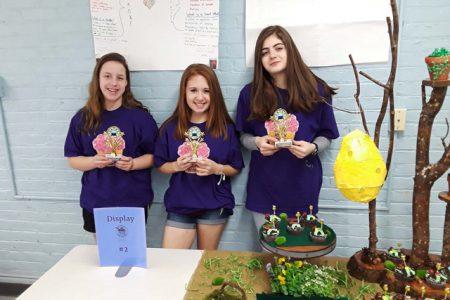 Busy Bees Win Knox Cupcake Wars 2018