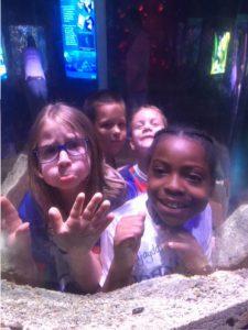 kids looking in a tank