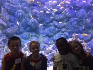 kids look at bubbles in a tank