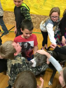 students gather around to pet Hudson