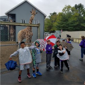 students pose in front of giraffe enclosure