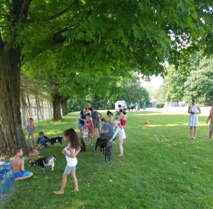 stduents sit under shade trees