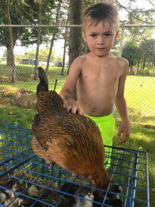 boy meeting a chicken