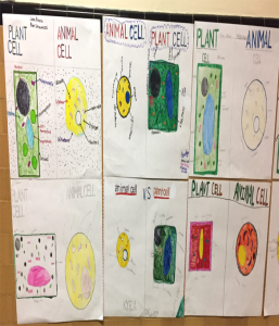 more cell posters on the wall