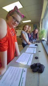 students identifying animal poop
