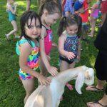 three girls petting a goat