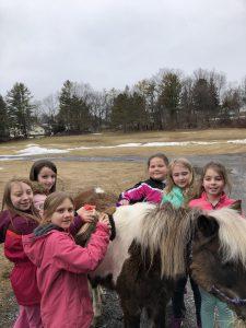 students brushing horse's mane